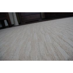 Carpet, wall-to-wall, HIGHWAY desert