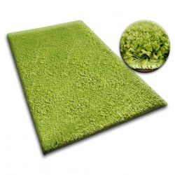 Carpet - wall-to-wall SHAGGY 5cm green