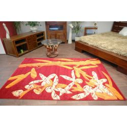 Carpet FUNNY design 7704 red